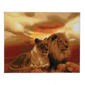 Crystal Art Lions of the Savanna - 40x50 cm - Full DP