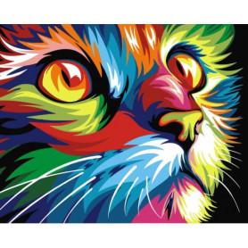 Rainbow Cat - malen nach zahlen - 40 x 50 cm