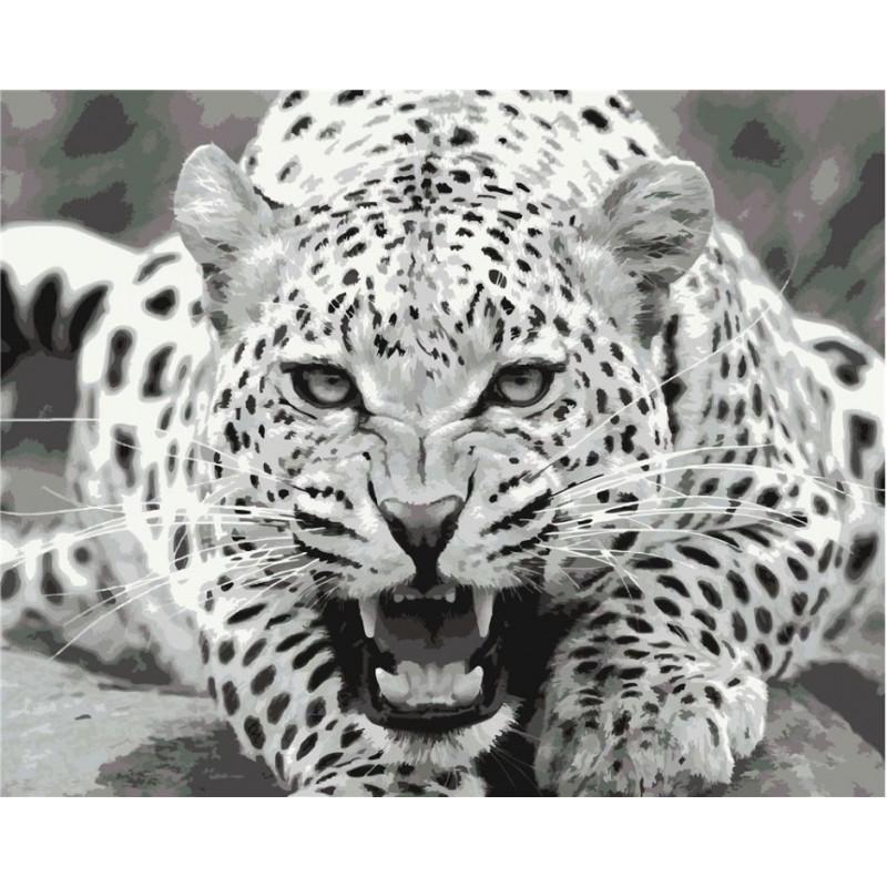 Wild & Dangerous - Schilderen op nummer - 40 x 50 cm