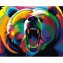 Rainbow Bear - malen nach zahlen - 40 x 50 cm