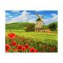 Hollands Landschap Schilderen op nummer