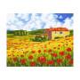 Poppy Meadow - Schilderen op nummer - 40 x 50 cm