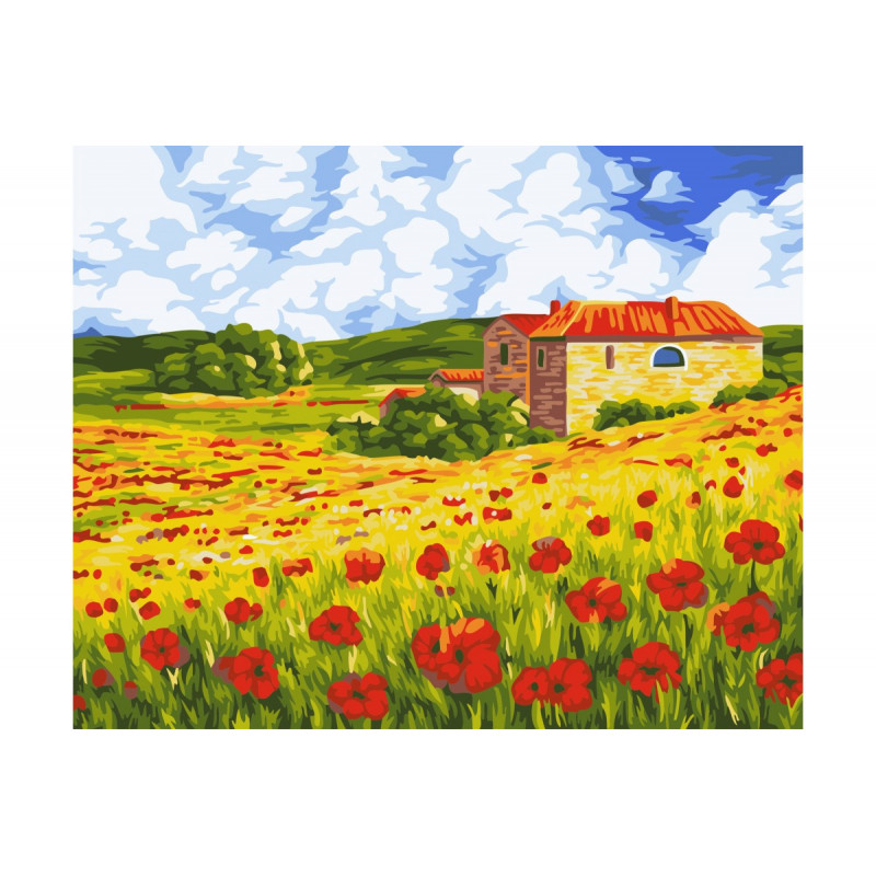 Poppy Meadow - malen nach zahlen - 40 x 50 cm