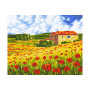 Poppy Meadow - Paint by Numbers - 40 x 50 cm