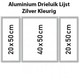 Zilverkleurige Aluminium Drieluik Lijst 50 x 80 cm