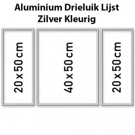 Silver Aluminium frame triptysch 50 x 80 cm