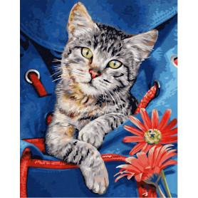 Kat in rugzak - Schipper 24 x 30 cm
