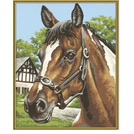 Paardenhoofd - Schipper 24 x 30 cm