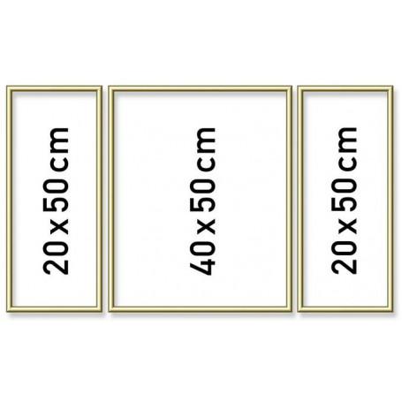 Goudkl. aluminium lijst drieluik 50/80cm