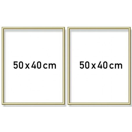 Goudkl. aluminium lijst tweeluik 50x80cm